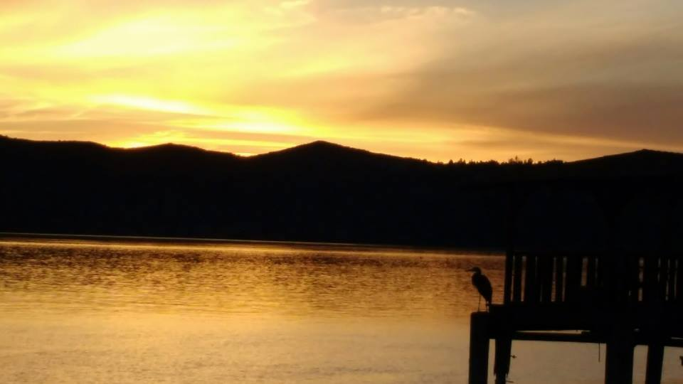 tiny travel chick things to do in california clearlake sunset with crane