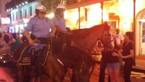 tiny travel chick new orleans police horse