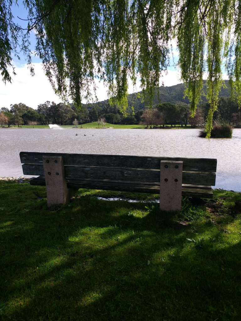 tiny travel chick things to do in california lagoon park