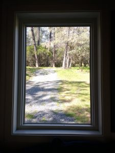 tiny travel chick best travel experience tiny house window view