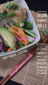 tiny travel chick best travel experience tiny house cooking