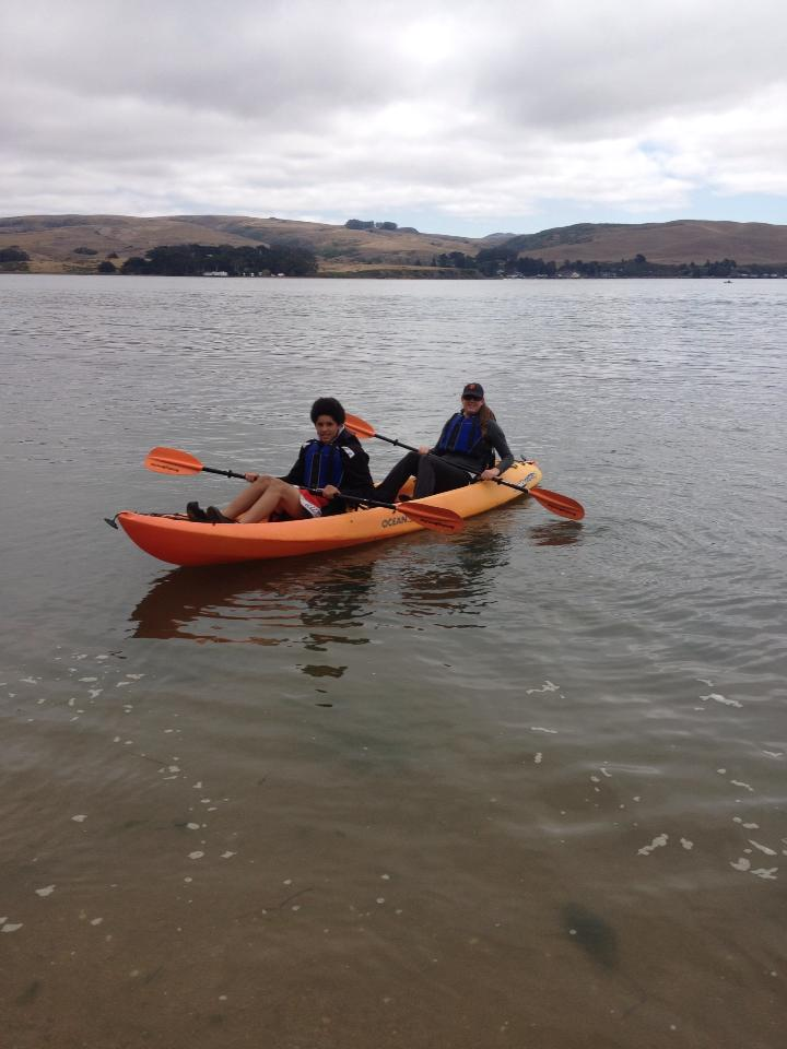 tiny travel chick things to do in california kayaking tomales bay