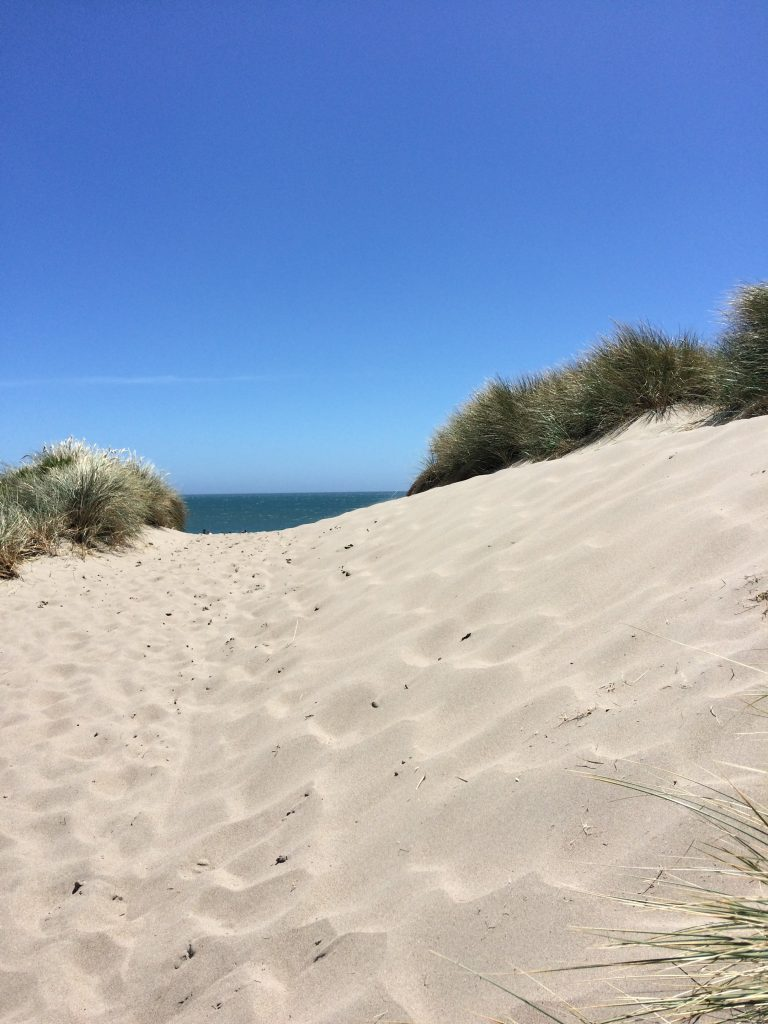 tiny travel chick things to do in california limantour beach