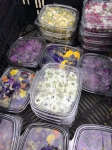 tiny travel chick most memorable travel experience edible flowers