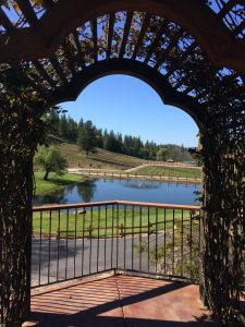 tiny travel chick best travel experience saluti cellars view
