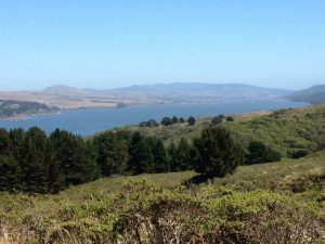 tiny travel chick most memorable travel experience tomales bay ca