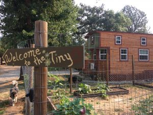 tiny travel chick amazing travel tiny house garden view