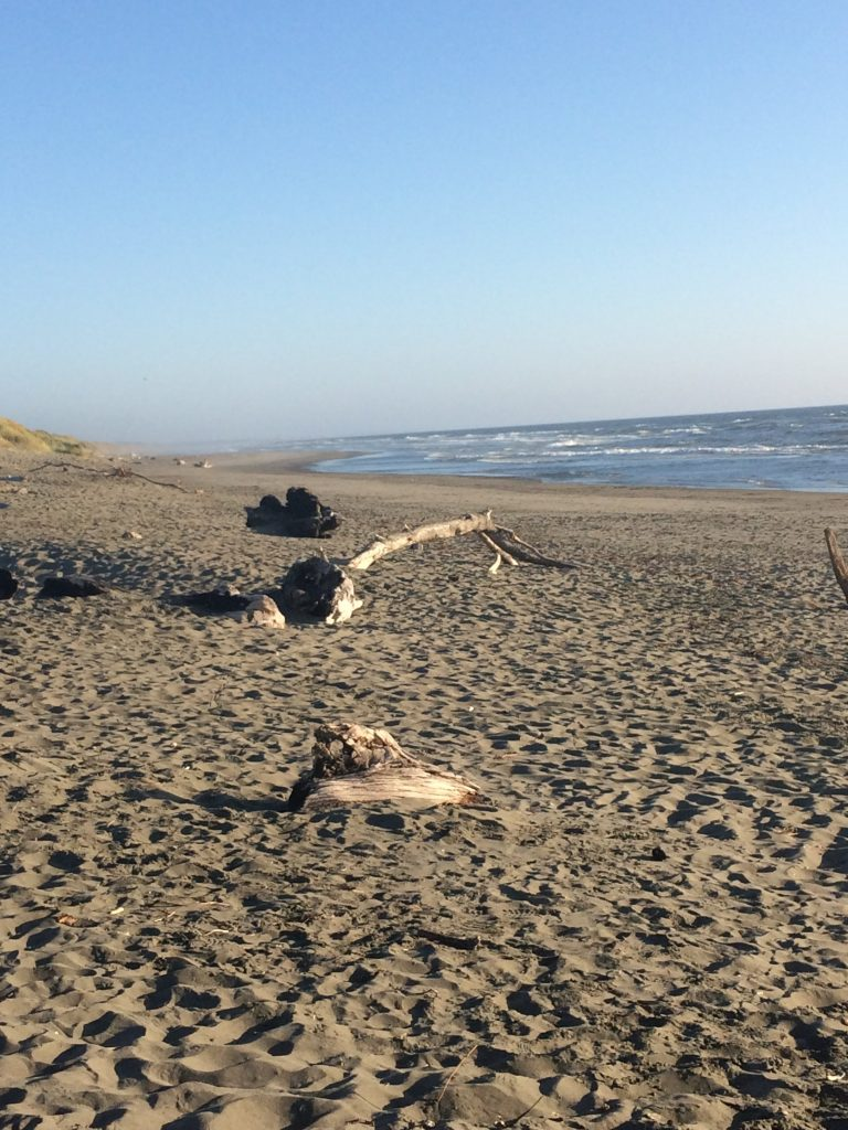 tiny travel chick things to do in california mad river beach