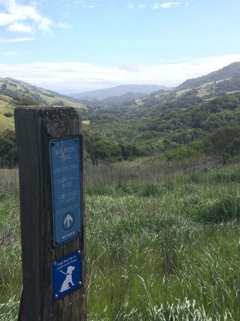 tiny travel chick things to do in california big rock trail view