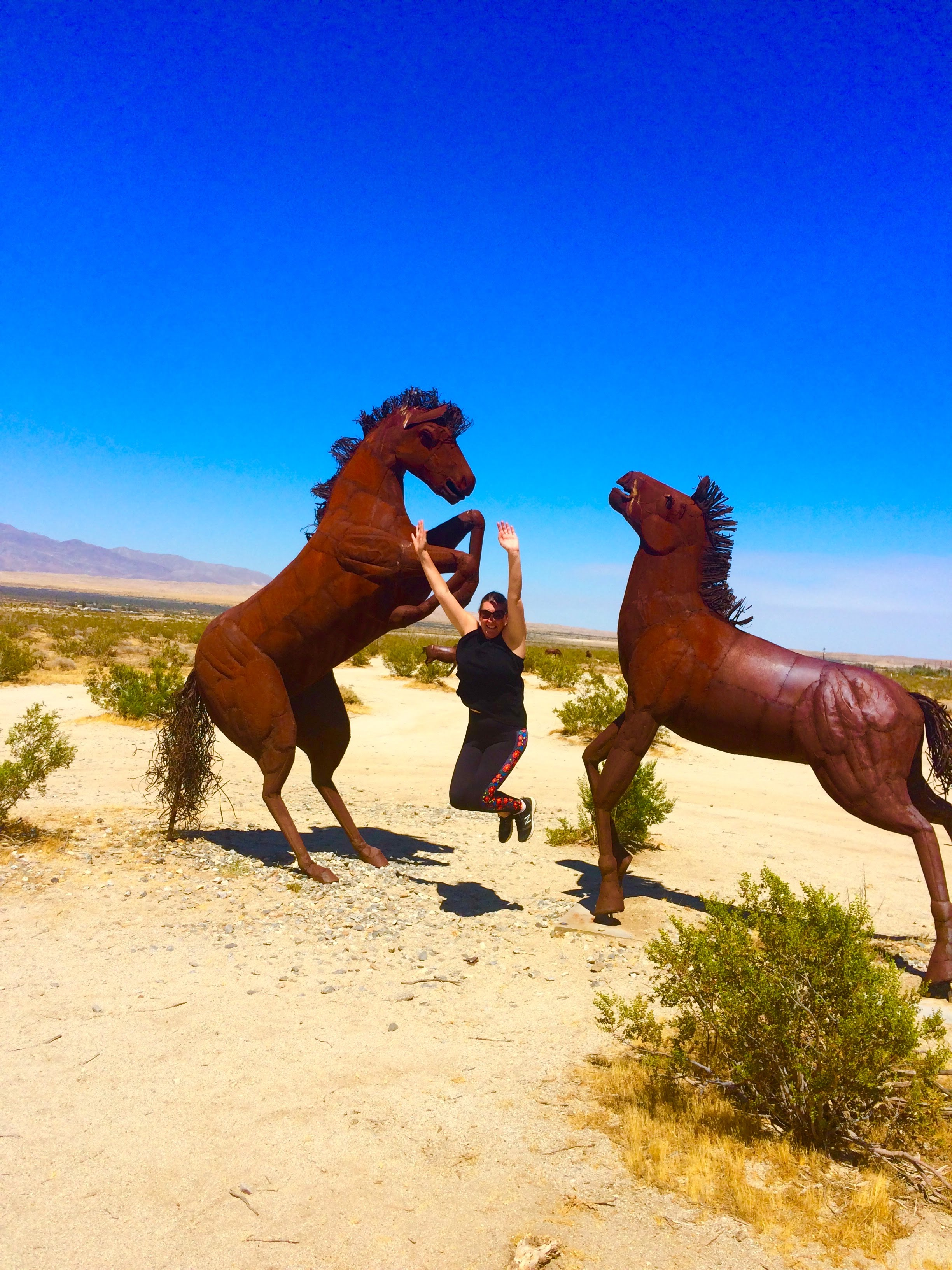 tiny travel chick unique things to do in southern california galleta meadows horse sculpture