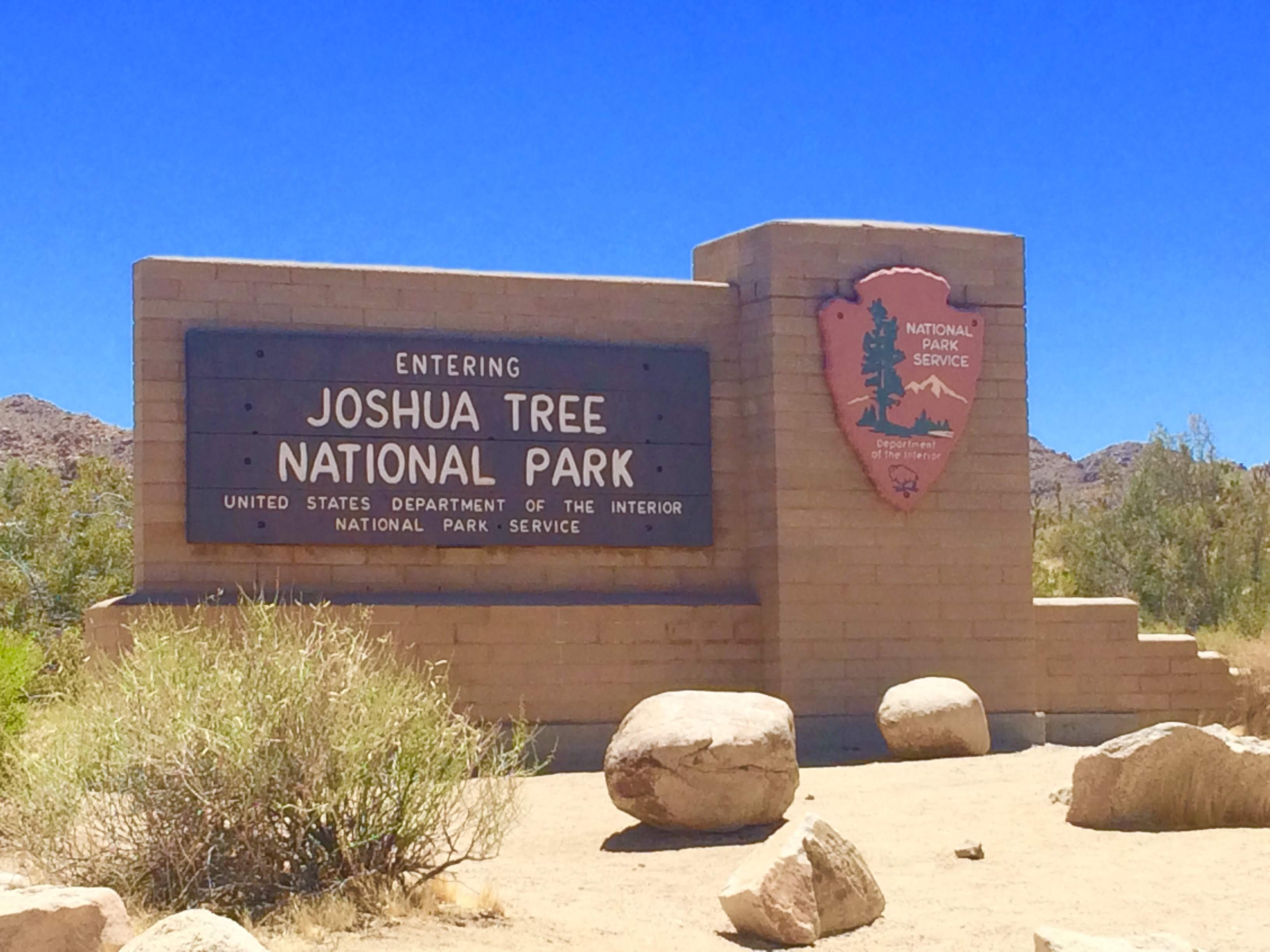 tiny travel chick unique things to do in southern california joshua tree national park