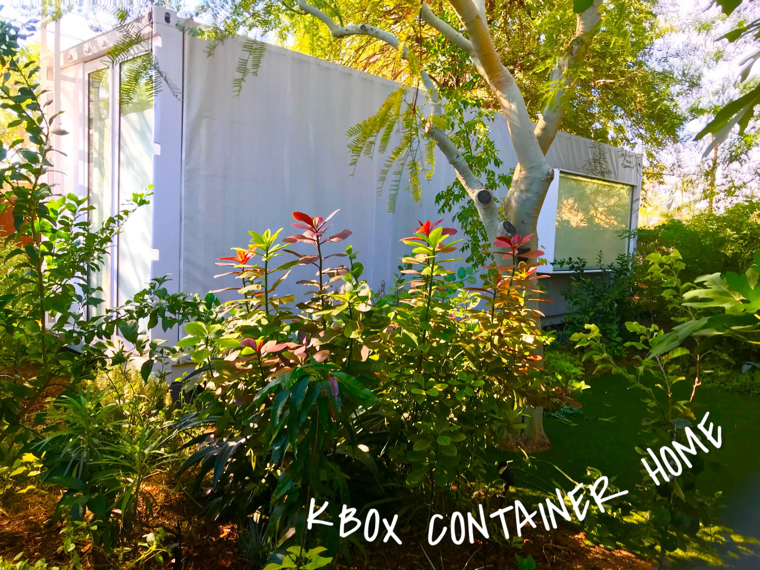 tiny travel chick kbox container home